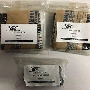 2C0-A2110-70 YEC Valve Spring Set